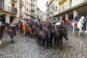 Caballos de las calles de estella