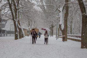 Personas paseando por la calle nevada
