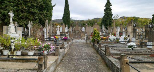 Imagen Medidas especiales en el cementerio con motivo de Todos los Santos
